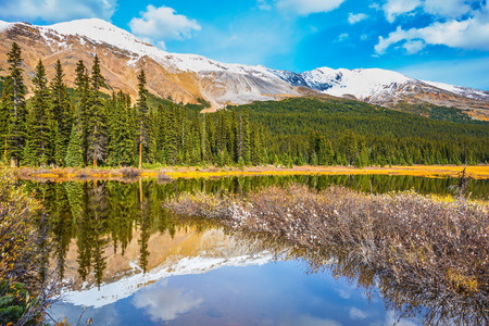 ecotourism: The concept of eco-tourism and active tourism. The boggy valley in the Rocky Mountains of Canada