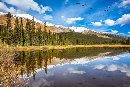 Flock of birds is reflected  in smooth water of the lake.Rocky Mountains on a sunny autumn day. The concept of active tourism and ecotourism Stock Photo