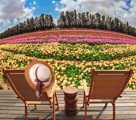 turismo ecologico: Concepto de turismo ecológico. sombrero de paja de la mujer en una parte posterior de una tumbona. camastros de madera en el prado con flores. Concepto de turismo ecológico. resto rural Foto de archivo