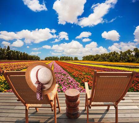 turismo ecologico: camastros de madera en el prado con flores. sombrero de un elegante de las mujeres de paja en una parte posterior una tumbona. Concepto de turismo ecológico. resto rural