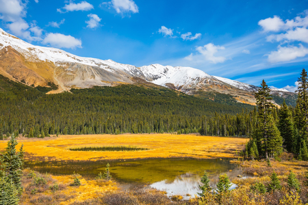 The concept of ecotourism. The mountains are covered in snow. Autumn in Canada. Shallow marshy lake in the Rocky Mountains Stock Photo