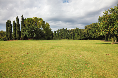 lawn grass: Huge yellowed field in a luxurious Italian park-garden Sigurta Stock Photo