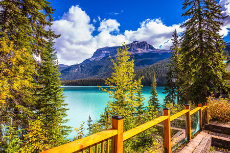 ecotourism: Wooden fence on the lake promenade. Camping and coniferous forest. The concept of eco-tourism