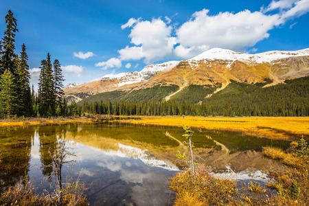 ecotourism: The concept of active tourism and ecotourism. Waterlogged valley in the snowy Rocky Mountains. Sunny day Stock Photo