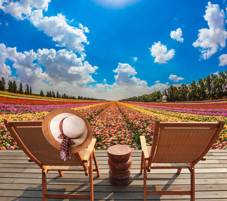 turismo ecologico: sombrero de paja de la mujer en una parte posterior de una tumbona. camastros de madera en el prado con flores. Concepto de turismo ecológico. resto rural Foto de archivo