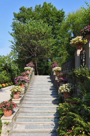 groomed: White marble ladder in beautiful well-groomed park