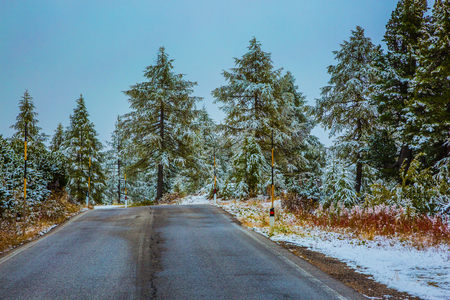 Northern Italy. First snow in the Dolomites melts. Wet road to the pass Giau