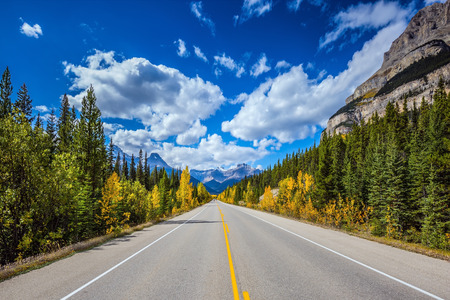 icefield: Excellent highway and surrounded by autumnal woods. Travel to the Bow River Canyon in September.  Canadian Rockies, Great Banff