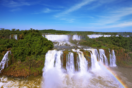 foamy: Roaring falls in South America - Iguazu. Foamy streams fall between the green jungle. The magnificent rainbow is shone in a water dust