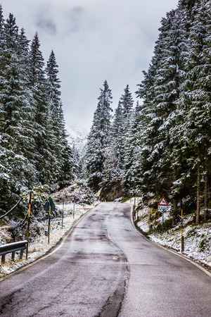On the Alpine Pass Giau first snow fell. Wet road in the mountains among the snow-covered firs and pines Stock Photo