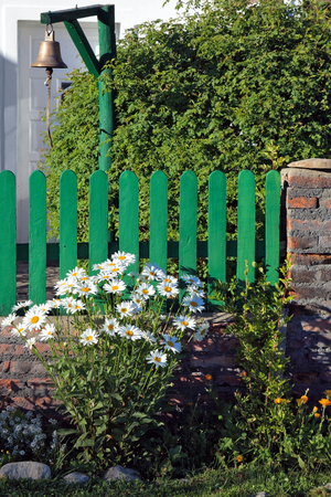 The solitary Estancia in the national park Perito Moreno in Argentina. Bush blooming daisies next to a low fence of green picket fence. Decorative bronze bell