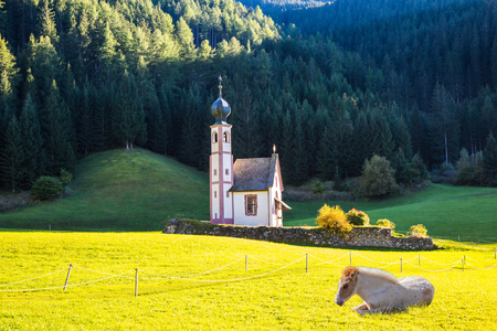 The famous church of Santa Magdalena in green Alpine meadows. On the valley resting horse in Dolomites. The concept of an active and eco-tourism