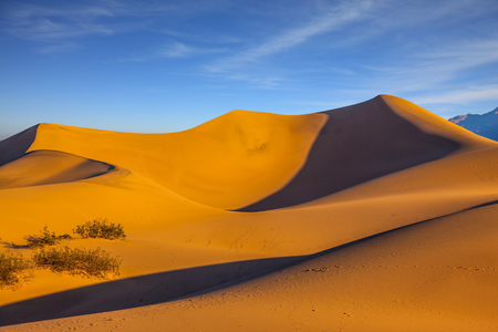 Mesquite Flat Sand Dunes. Bright sunny morning in a picturesque part of Death Valley, USA. Bizarre twists of orange sand dunes  Stock Photo