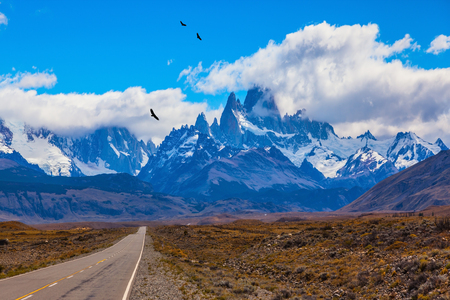 Over the road flying flock of Andean condors. The highway crosses the Patagonia and leads to snow-capped peaks of Mount Fitzroy Stock Photo