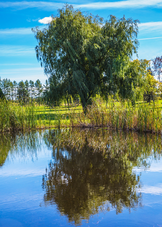 Autumn  in French Canada. Adorable pond in the beautiful park. Concept of recreational tourism