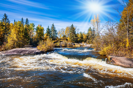 Foamy water rifts on stones and low fir-trees on river banks Winnipeg. The concept of ecological and extreme tourism. Autumn northern sun in Old Pinava Dam Stock Photo