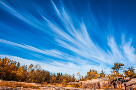 Walk on the park in warm silent day. Cirrus clouds  in Pinawa Provincial Heritage Park. The concept of ecological and recreational tourism