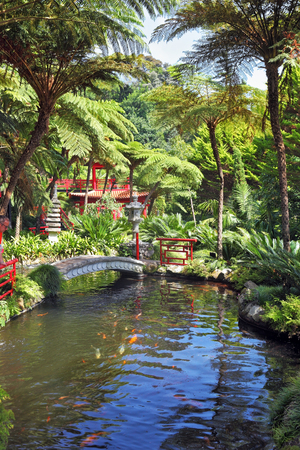 spanned: Lovely pond with goldfish. Across the pond spanned by graceful bridge. In the depths of the park is visible Chinese gazebo