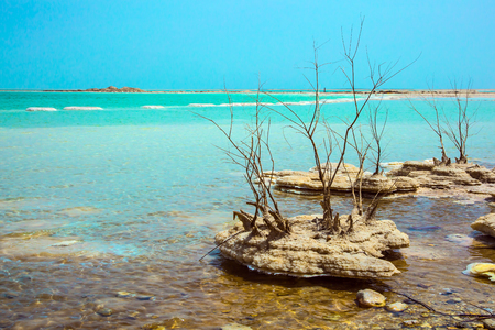 Israel, spring. Forever Living Dead Sea. Picturesque islands of medicinal salt in the lake. The concept of ecological and therapeutic tourism Stock Photo