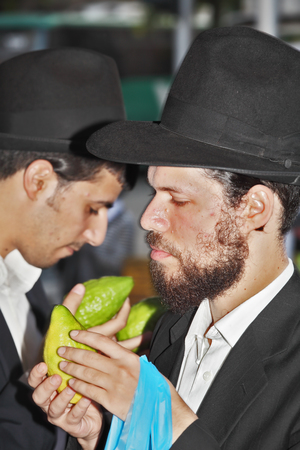 jewish: BENE - BERAK, ISRAEL - SEPTEMBER 17, 2013: A young religious man - Jew closely examining citrus - fruit for the holiday of Sukkot. The traditional holiday bazaar before Sukkot Editorial