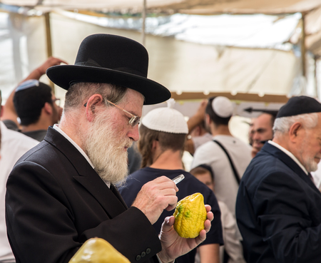 JERUSALEM, ISRAEL - OKTOBER 16, 2016: Elderly ortodox Jew with white beard is checking with lupa ritual plant etrog - citrus. Traditional market before the holiday of Sukkot