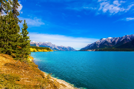 abraham: Rocky Mountains of Canada in Indian summer. Sunny cloudless day in October. Stunning turquoise Abraham Lake in a flood. The concept of ecological and active tourism Stock Photo