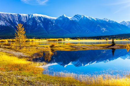 abraham: Sunny autumn day in the Rocky Mountains of Canada. The water of fantastic Abraham lake reflects mountains and trees. The concept of ecological and active tourism