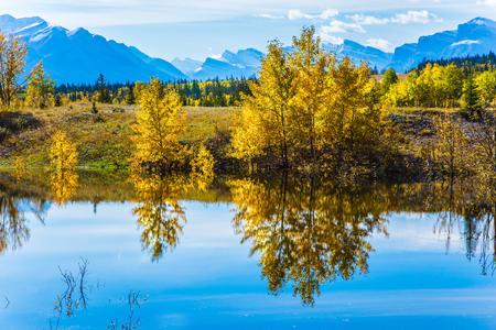 turismo ecologico: La superficie del espejo del lago artificial Abraham refleja cirros claros y árboles. Soleado día de otoño en las Montañas Rocosas de Canadá. El concepto de turismo ecológico y activo