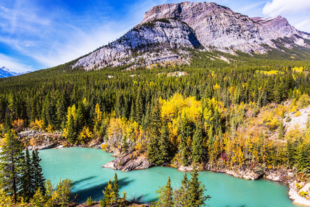 abraham: Indian summer in Canada, warm sunny day in autumn. Dense forests cover the lake shores. Abraham Lake is the most beautiful lake in the Rockies. The concept of ecological and active tourism Stock Photo