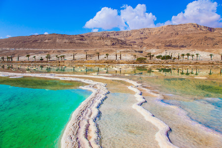 turismo ecologico:  Therapeutic Dead Sea, Israel. Picturesque stripes of salt on the shallow seashore. The concept of medical and ecological tourism