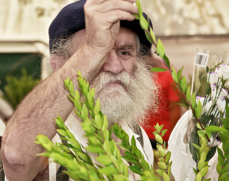 religious clothing: JERUSALEM, ISRAEL - SEPTEMBER 18, 2013: The gray-bearded religious Jew in a black beret carefully chooses ritual plant - myrtle for Sukkot.