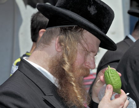 JERUSALEM, ISRAEL - SEPTEMBER 18, 2013: Traditional market before the holiday of Sukkot. The religious Jew with red beard and long side curls carefully examines ritual citrus Editorial