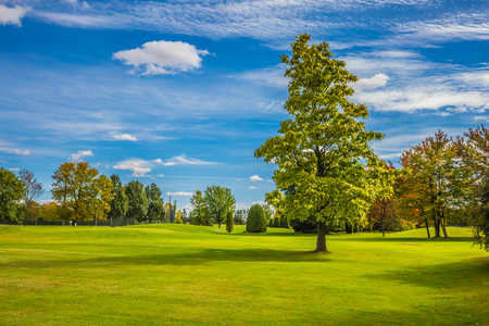 Green grass field in a beautiful park. Landmarks of Montreal, French Canada. Concept of recreational tourism