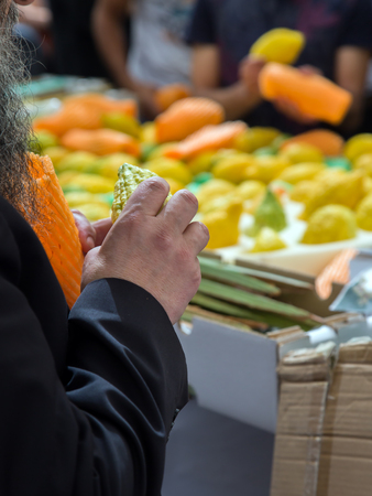 sukkoth festival: Sale of ritual plants on the traditional market in the capital of Israel, Jerusalem.  The buyer chooses a citrus - etrog. Ancient Jewish holiday Sukkot