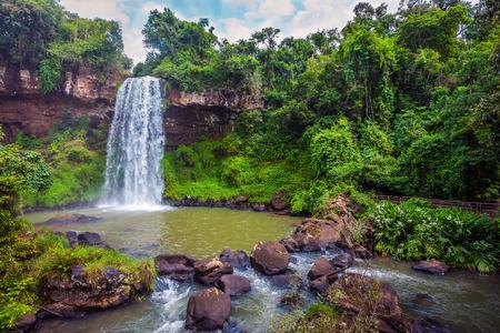 パタゴニアへの旅行します。イグアスの滝。水の広いゴロゴロ ストリームは、玄武岩の棚から落ちる。生態学的な観光事業の概念