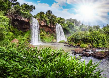 アルゼンチンのイグアスの滝から 2 つの急速な滝。暑い熱帯の太陽を照らすゴロゴロの滝。極端な生態学的な観光事業の概念