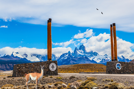 Patagonian pampas. Symbolic columns on the road to Los Glaciares National Park. Near the road is the lama guanaco. The concept of active and ecological tourism Editorial