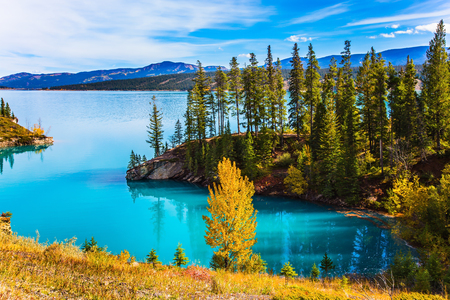 smooth: Abraham Lake is the most beautiful lake in the Rockies of Canada. Dense forests cover the lake shores. Warm sunny day in autumn, Indian summer. The concept of ecological and active tourism