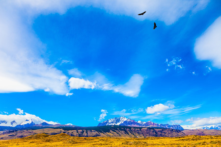 Desert and mountains. The famous ridge Mount Fitz Roy and the Patagonian pampas. The Andean condors hover over the pampas. The concept of active and extreme tourism Stock Photo