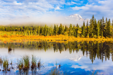 smooth: The concept of extreme and ecotourism. Patricia Lake among the firs and pines. Water reflects the sky. Cloudy morning in the Rocky Mountains Stock Photo