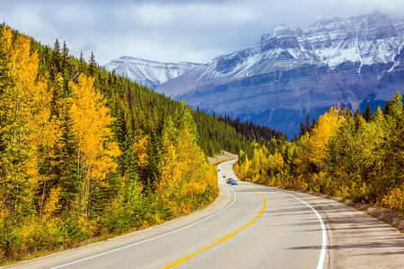The grandiose nature of the Rockies of Canada. The magnificent Highway 93 Icefields Parkway passes among the snow-capped mountains. The concept of active car tourism