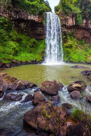 水の広いゴロゴロ ストリームは、玄武岩の棚から落ちる。アルゼンチン、イグアスの滝。生態学的な観光事業の概念