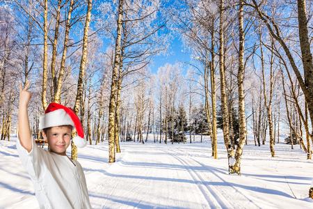 Very handsome boy in a red Santa Claus hat on the edge of a winter forest. New Year in Lapland. Sunny awinter day. Journey to Santa Claus. Concept of the childrens tourism