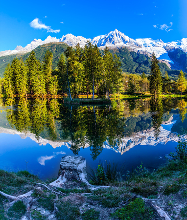 Large stump on the shore of the lake. Magically beautiful park in the mountain resort of Chamonix. Snowy Alps are reflected in the lake. Concept of active and ecotourism