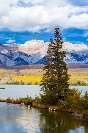 The valley along the Pocahontas road. Rocky Mountains, Canada. Shallow-water lakes, picturesque firs and distant mountains. Concept of car and ecological tourism
