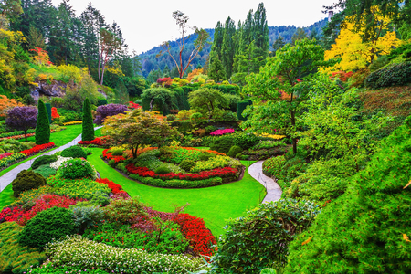 Butchart Gardens -  gardens on Vancouver Island. Flower beds of colorful flowers and walking paths for tourists. The world-famous masterpiece of park architecture