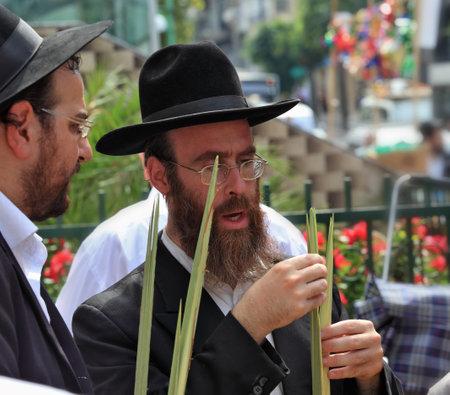 Bnei Brak - September 22: Two Orthodox Jews in black hats picks Lula before Sukkot September 22, 2010 in Bnei Brak, Israel   Editorial