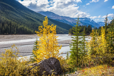 Autumn decrease in river water. Rocky Mountains. The picturesque valley in Jasper National Park Stock Photo