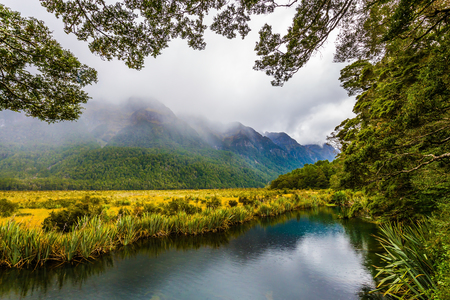 Picturesque lake in the fogs of the South Island. Exotic journey to the New Zealand. Concept of active and ecological tourism