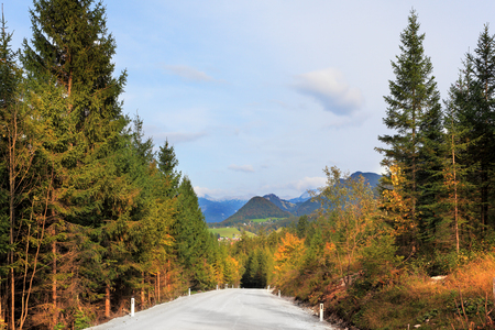 Beautiful autumn day in the Austrian Alps. Road in the mountains of beginners yellowing pines and spruces 版權商用圖片